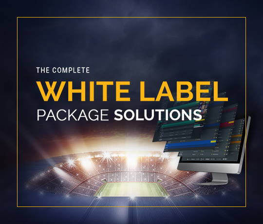 Features of Delasport's White Label Solution